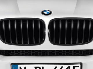 Решетки радиатора черные M-Performance для BMW X6M E71/E72